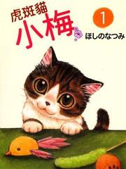 虎斑貓小梅