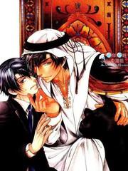 傲慢王子與祕密情人的愛戀