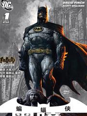 蝙蝠俠:黑暗騎士