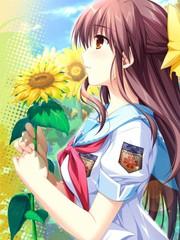 車輪之國-向日葵的少女